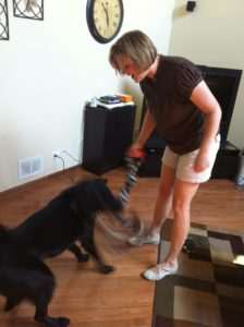 A Rousing Game of Tug