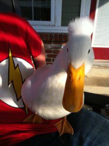 Duck Papa