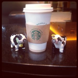 Traveling cows