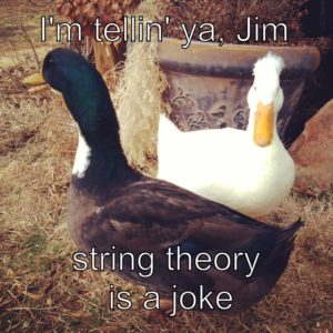 String Theory on the Home Front