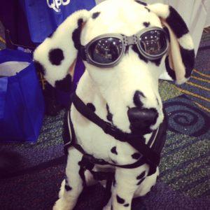 Pets Weekly Mascot