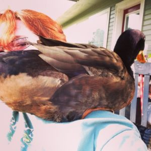 A duck on my shoulder