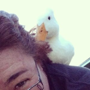 Duck on my back