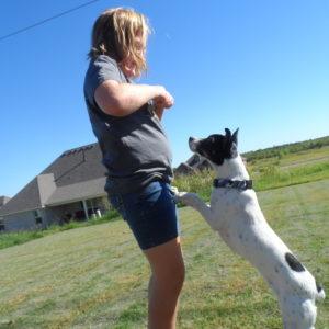 Dog treats make Max stand and beg!