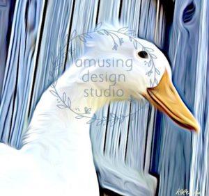 Pretty duck portrait