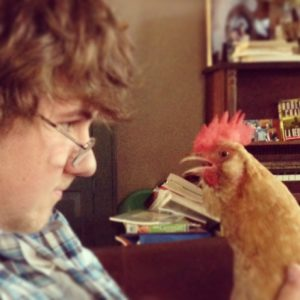 The chicken who saved a boy