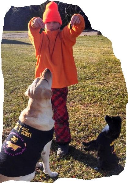 Boy hypnotizes dogs