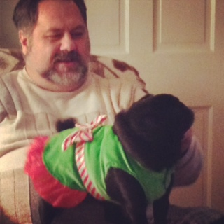 Stella Rose Pug and Hunny