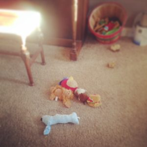 Dog toys on the floor