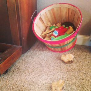 A dog toy basket