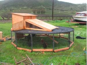 Genius trampoline chicken coop