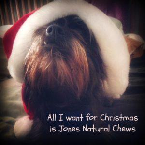 Christmas dog from Jones Natural Chews