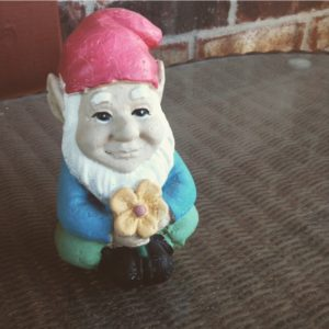 Carl the hippie gnomie
