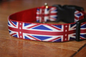 Union Jack collar for dogs