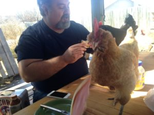 Fowl on the table