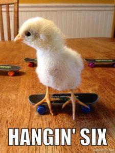 Hangin' six