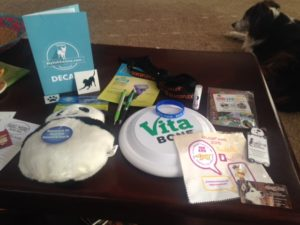 BlogPaws swag giveaway