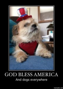 Give the patriotic dog a treat!