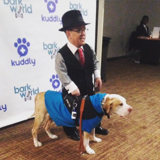 Shorty Rossi at BarkWorld, dogs to inspire
