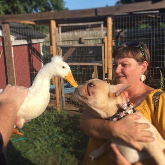 Give us a kiss at the mini BlogPaws in Tulsa www.DogTreatWeb.com