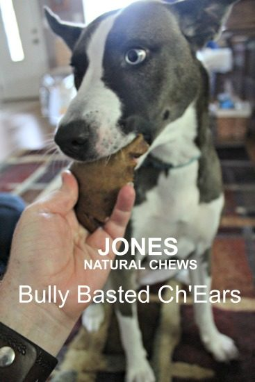 Bully Basted Ch'Earz from Jones Natural Chews