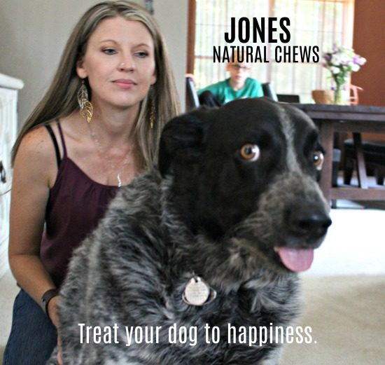 Kato Jack - one of the many dogs of Jones Natural Chews